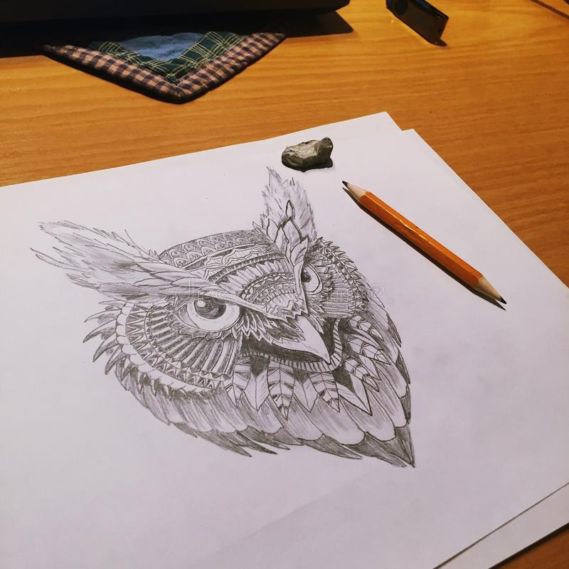 Owl Drawing stock fotografie