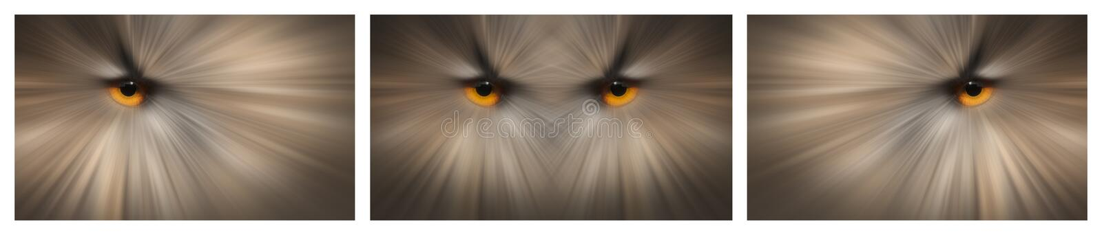 Owl Eyes. An abstract wall art image based on the eyes of the European Eagle Owl. As a prey item this might well be the last vision you ever see stock photography