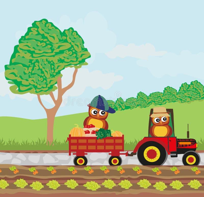 Owl Farmers vector illustratie