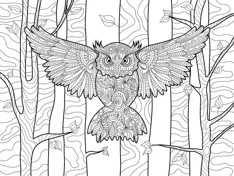 Owl in the forest coloring book for adults vector. Owl in the forest bird coloring book for adults vector illustration. Anti-stress coloring for adult. Zentangle royalty free illustration