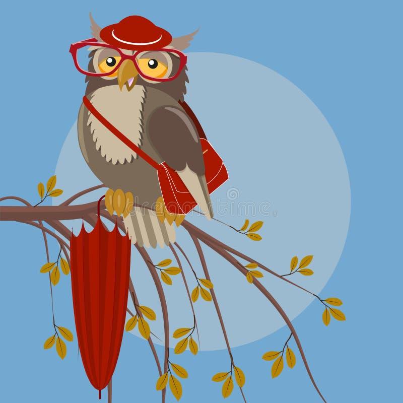 Owl in hat vector illustration