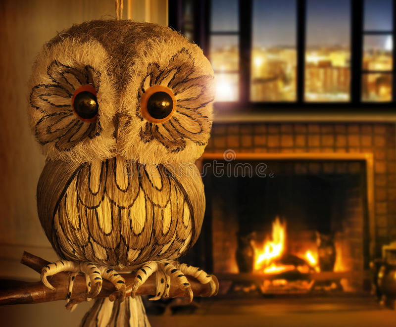 Owl at home royalty free stock photos