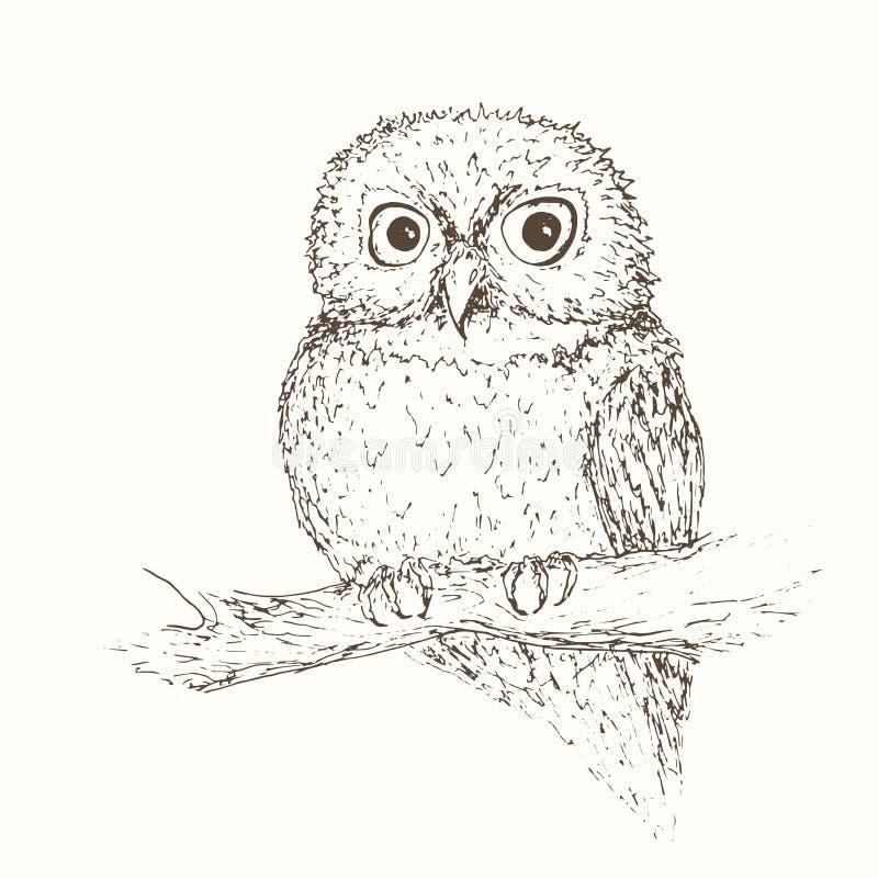 Free Owl Illustation 2 Stock Images - 42257204