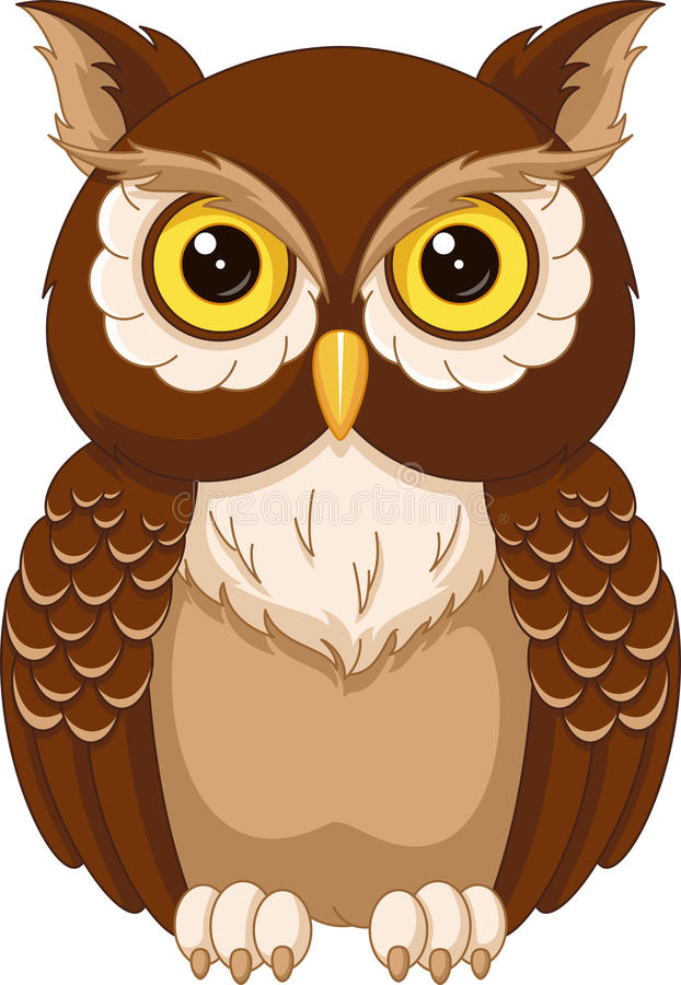 Owl. The image of the owl on a white background