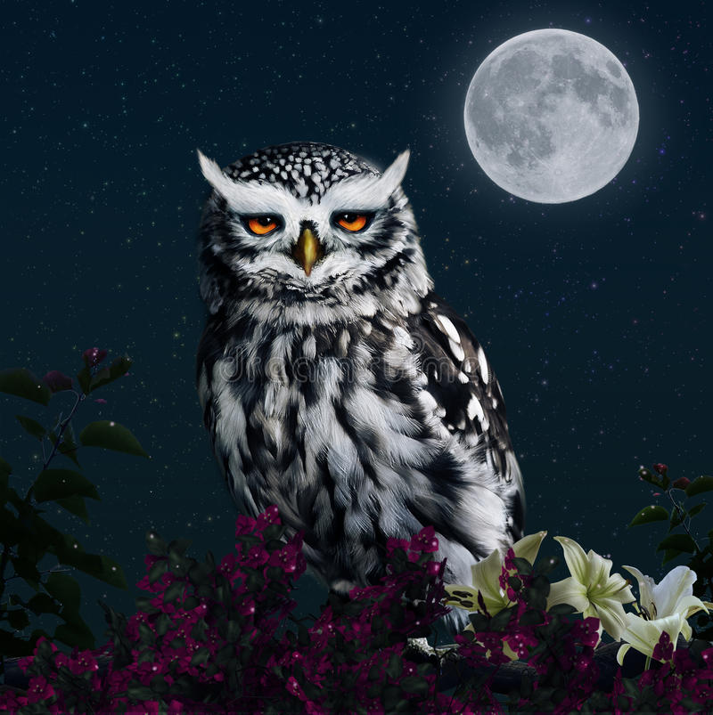 Download Owl In The Light Of The Moon Stock Illustration - Illustration of bird, flowers: 30734374