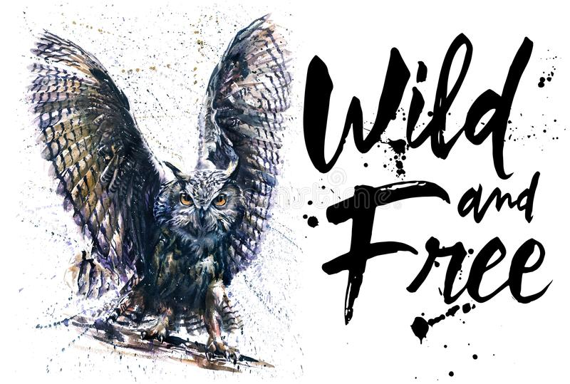 Owl night bird watercolor colorful painting, wings of night, big bird night predator, king of night, Eyes of night. Owl, night bird, design of t-shirt, wild and royalty free illustration