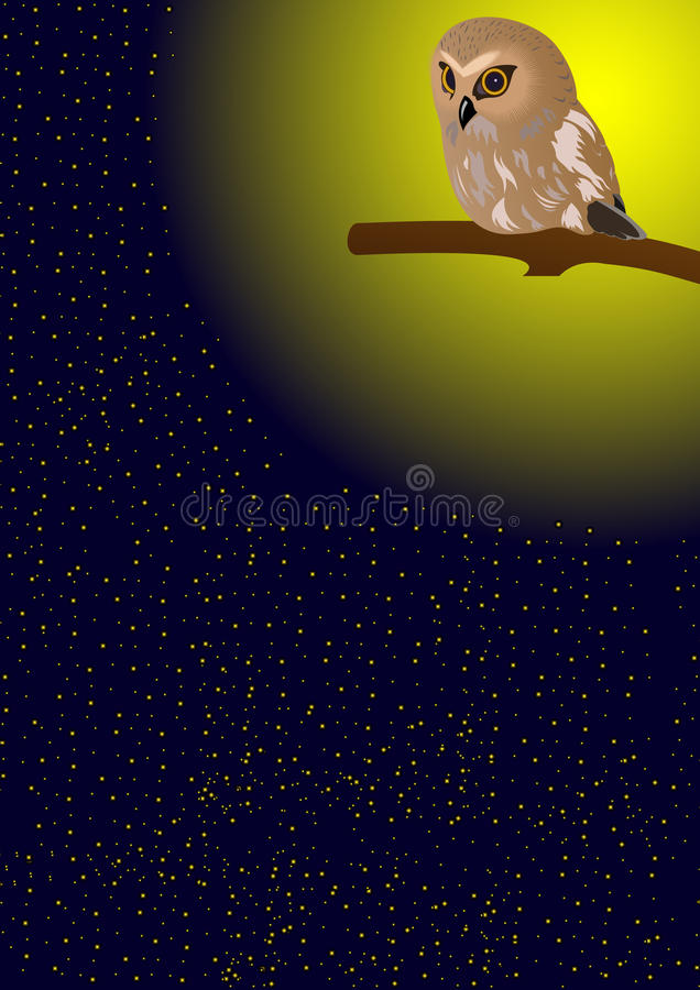 Download Owl in the night sky stock vector. Image of yellow, light - 19188115