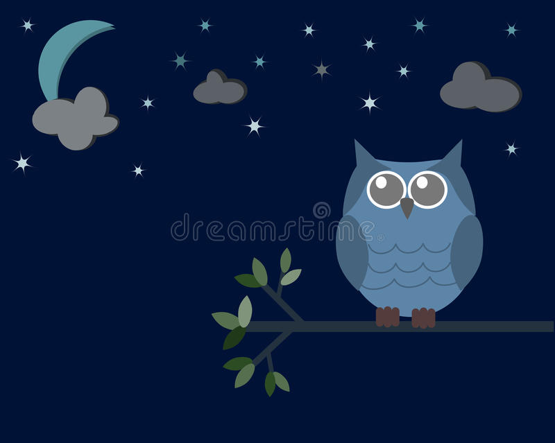 Owl in the night time vector illustration