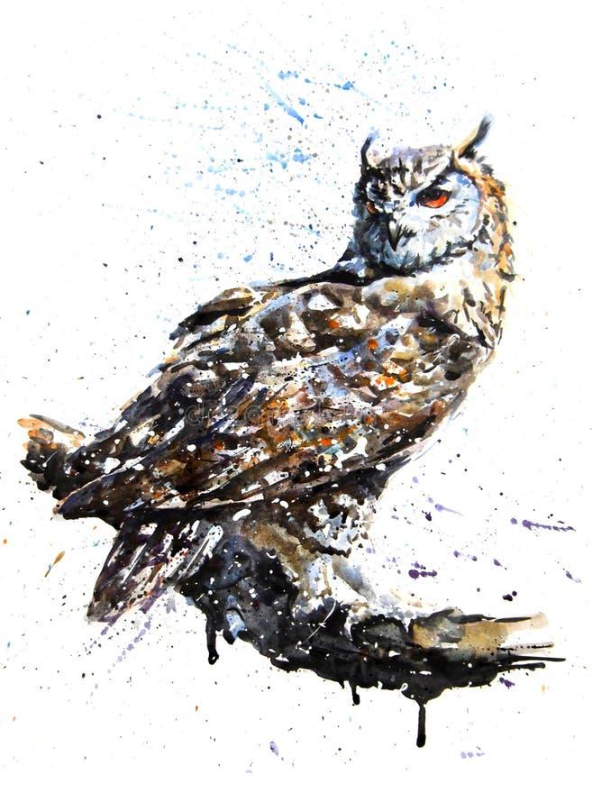 Owl predator watercolor painting drawing stock illustration