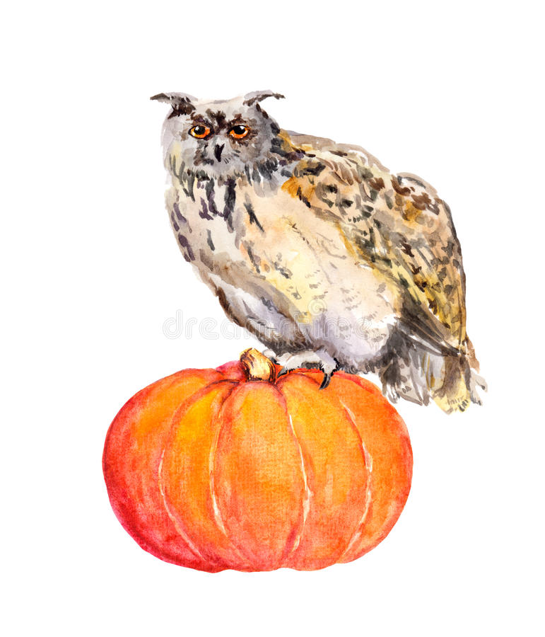 Owl on pumpkin. Halloween watercolor picture. stock illustration