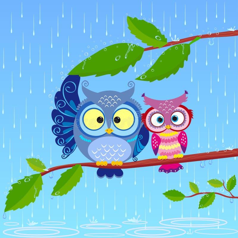 Download Owl Rain Royalty Free Stock Photo - Image: 26618825