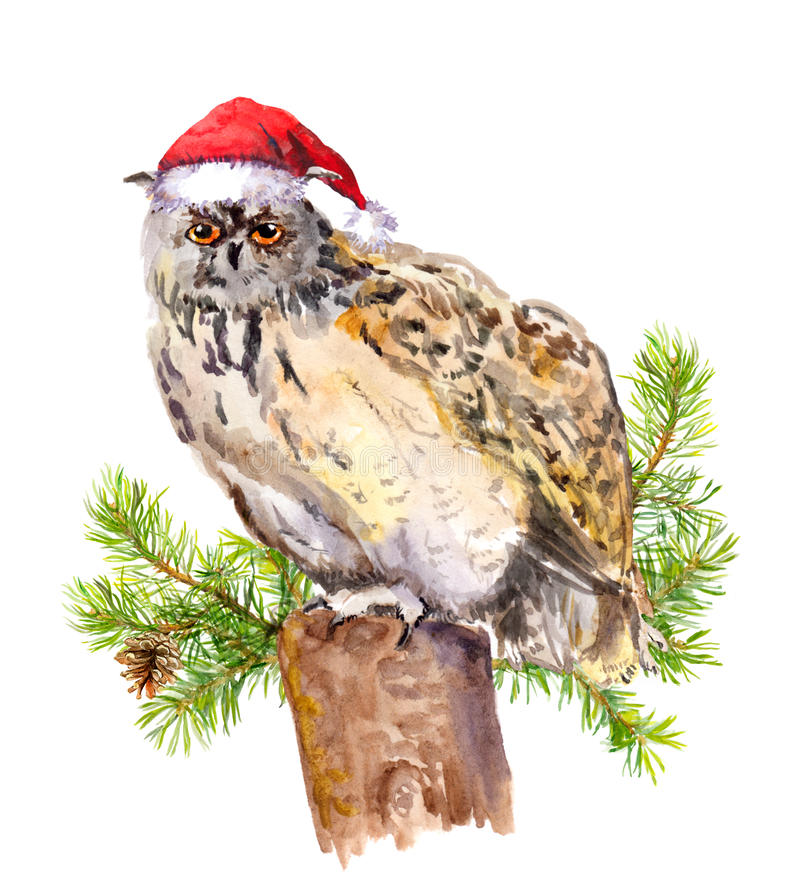 Owl in red santa`s hat. Watercolor christmas animal royalty free illustration