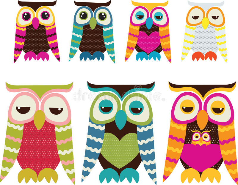 Owl Set. New Zealand owl in front of a white background