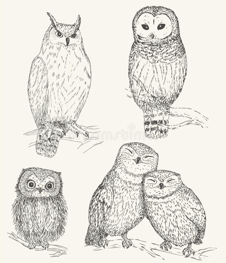 Owl set royalty free illustration