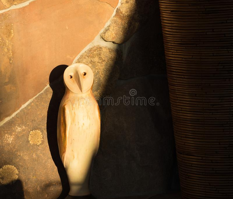 Owl Shadows royalty free stock photos