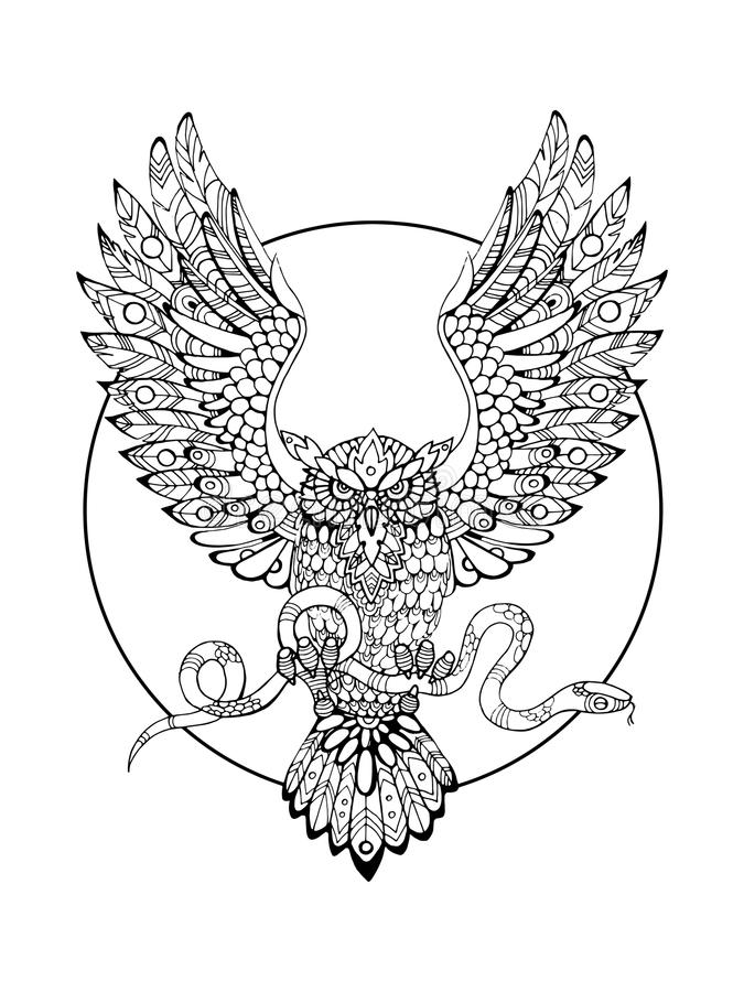Owl With Snake Coloring Book For Adults Vector Stock Vector ...