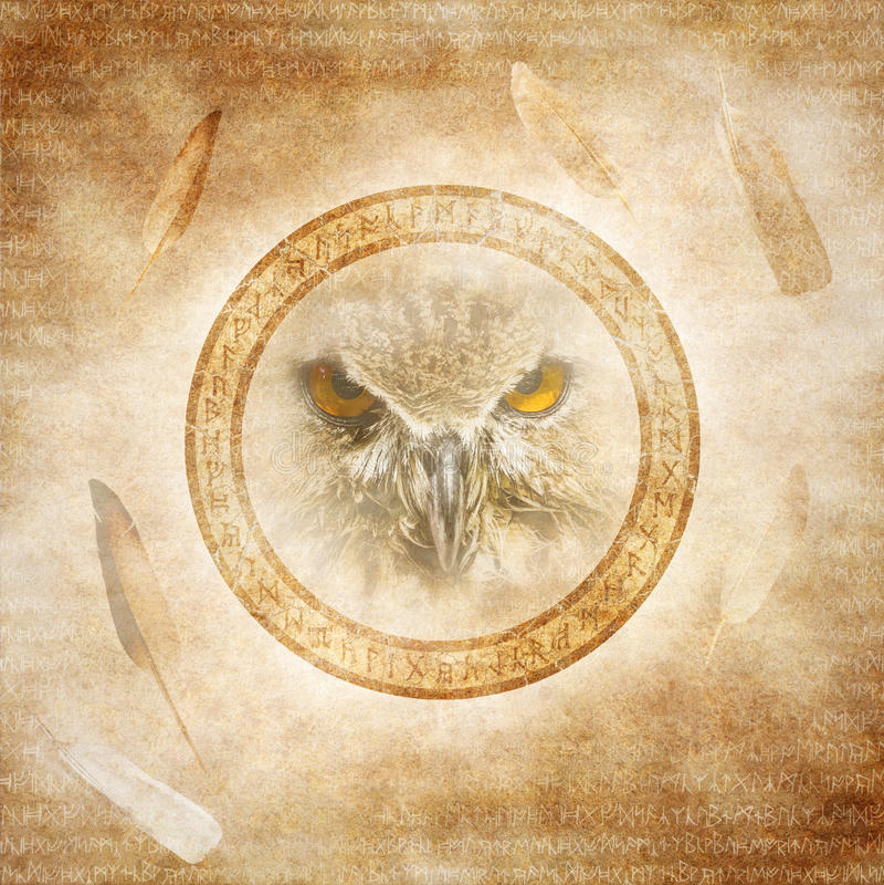 Owl Spirit fotografia stock