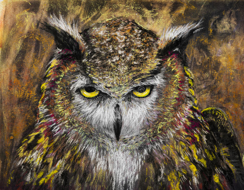 Owl staring intently charcoal drawing royalty free stock image
