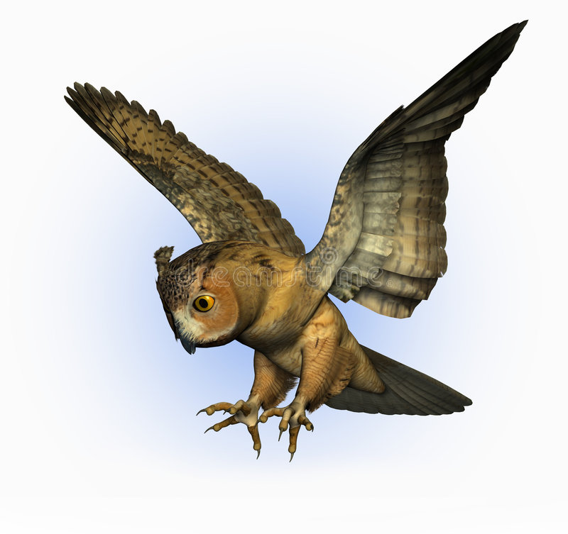Owl Swooping Down 2 - includes clipping path stock illustration