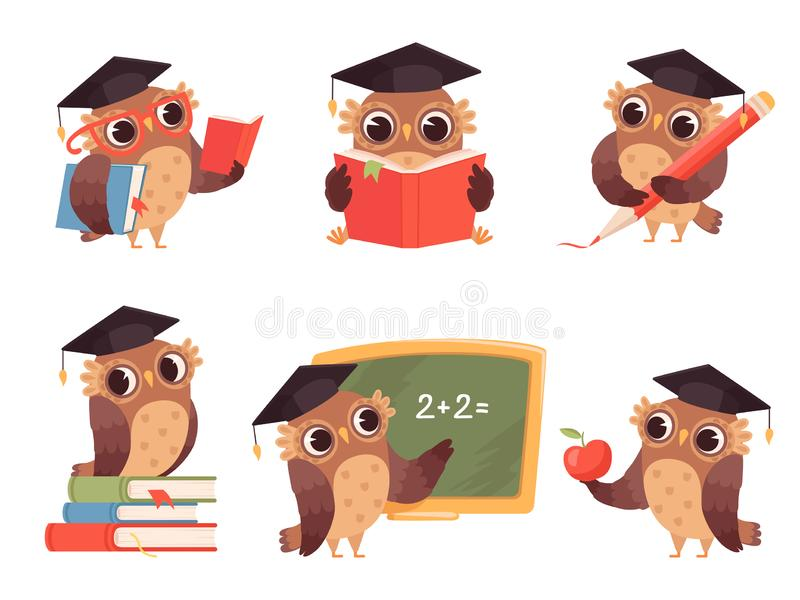 Owl Teacher Caráteres do pássaro dos desenhos animados com de volta às mascote bonitos dos artigos da escola que leem apontando i ilustração stock