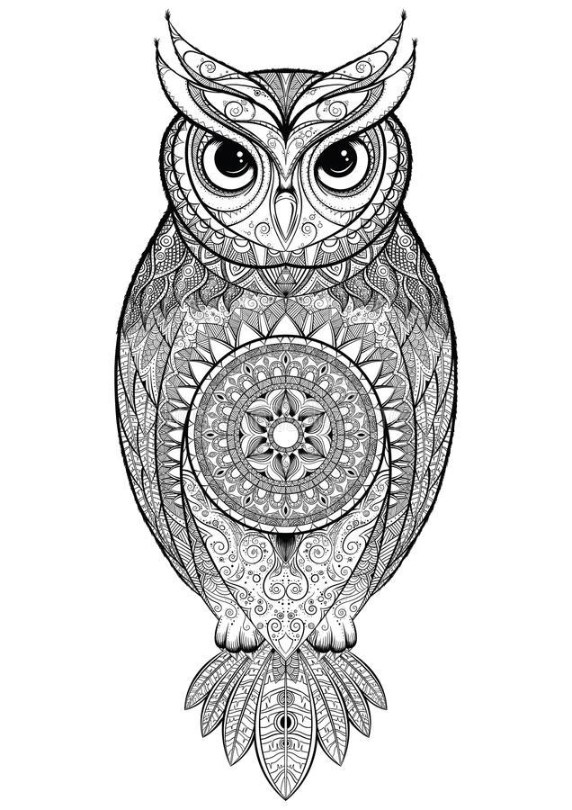 Owl With Tribal Ornament Stock Vector Illustration Of