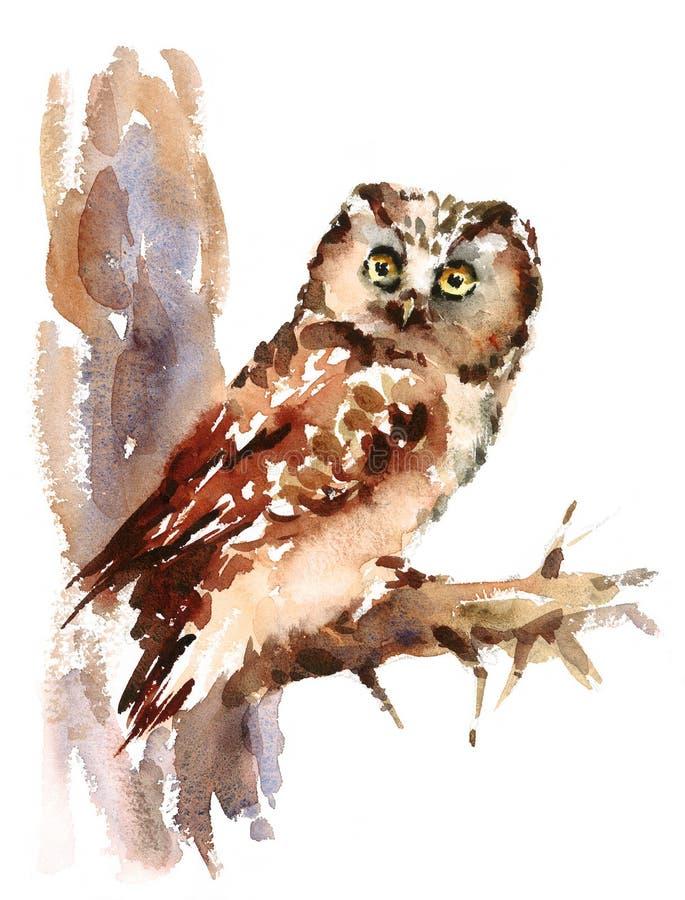 Owl Watercolor Bird Illustration Hand målade stock illustrationer