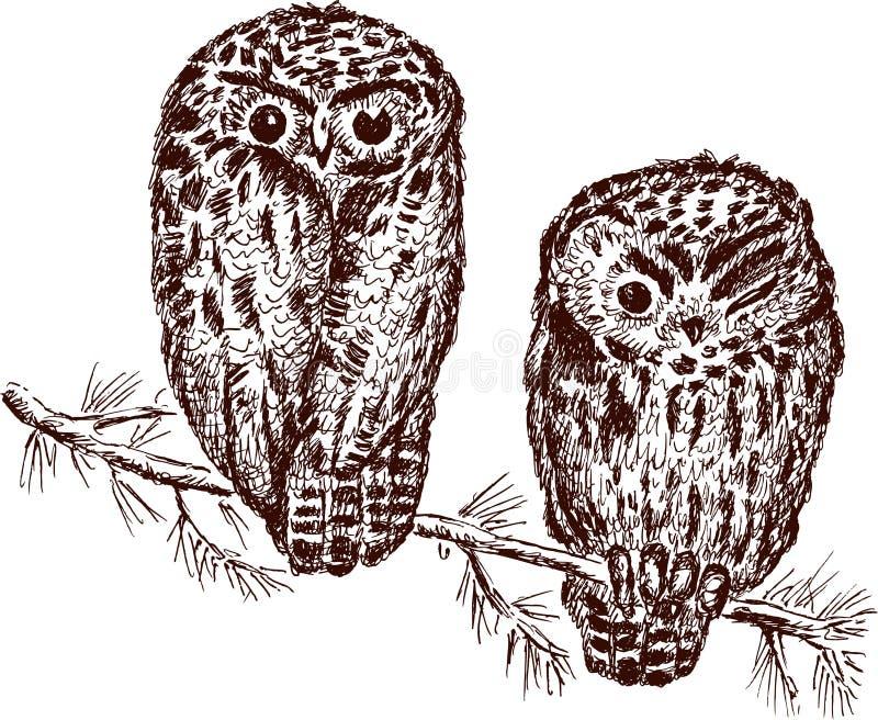 Download Owls stock vector. Illustration of hand, animal, sitting - 24904472