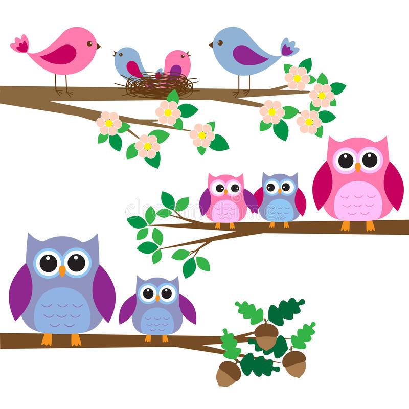 Owls and birds. Sitting on branches. Vector set
