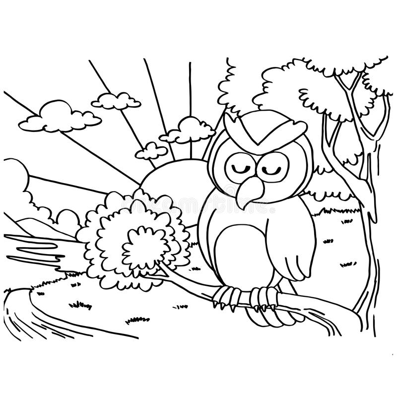 Owls Coloring Pages vector royalty free illustration