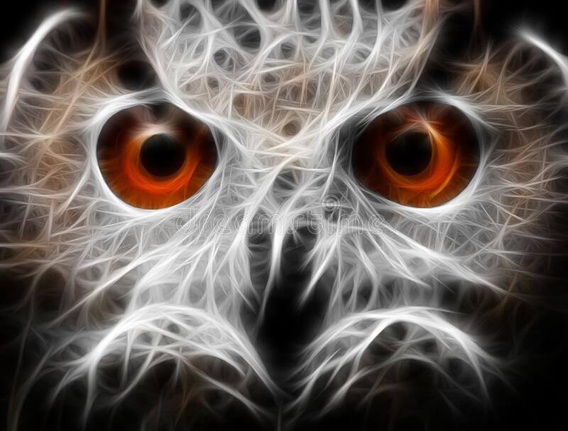 Owls Portrait. owl eyes - abstract painting, fractal.  stock photos