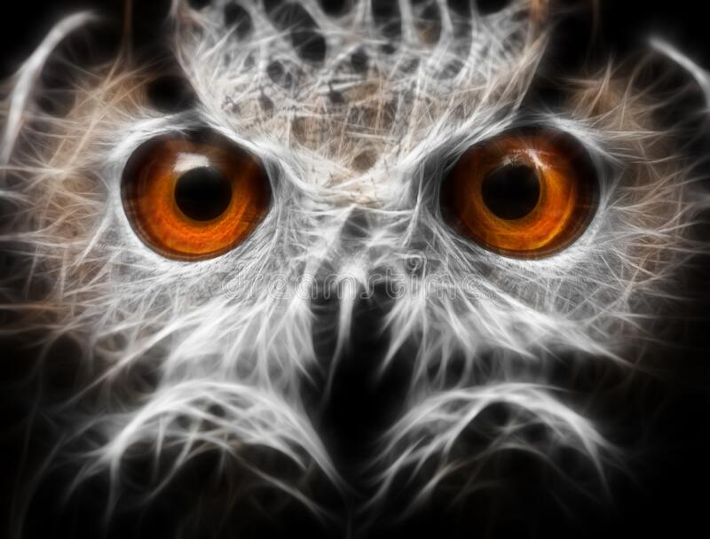 Owls Portrait. owl eyes - abstract painting, fractal.  stock images
