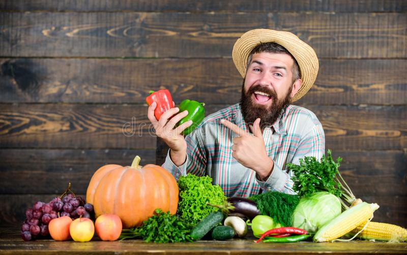 Own harvest. harvest festival. bearded mature farmer. organic and natural food. happy halloween. seasonal vitamin food. Useful fruit and vegetable. man chef stock image
