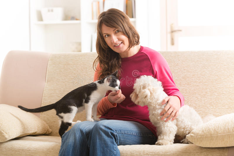 Owner with cat and dog. Little dog maltese and black and white cat sitting with owner on the sofa in home