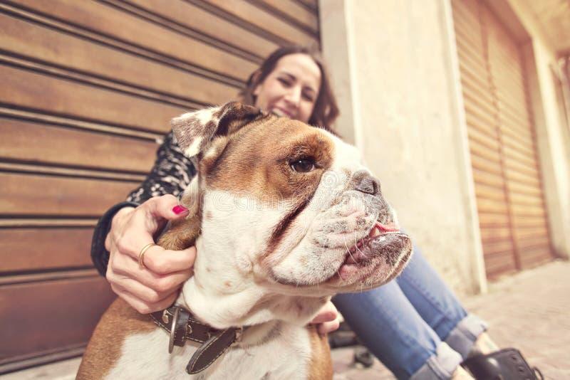 Owner enjoyed watching its playful bulldog stock photography