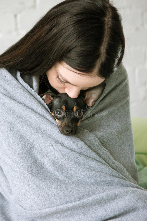 Owner friendship with small puppy stock images