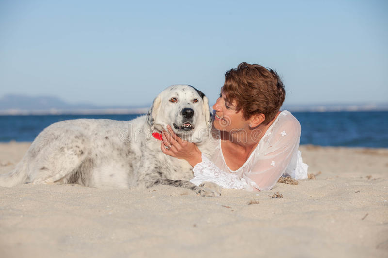 Owners and dogs on holiday royalty free stock photo
