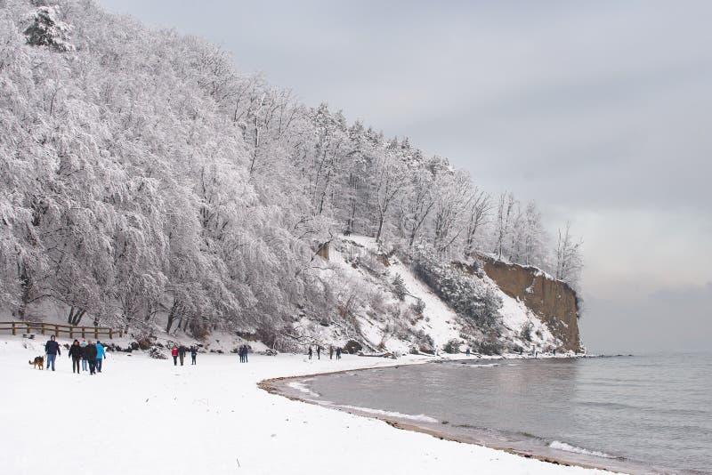 Owo de 'de Zima W Gdynia OrÅ images stock