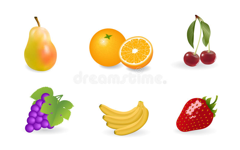 owoc ilustracji