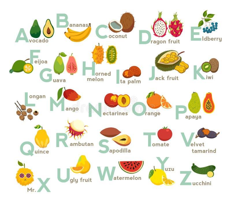 Owoc abc wektoru set Egzotyczne tropikalne owoc, jarzynowy abecadło Litchi, mango, bliźniarka, smok owoc royalty ilustracja
