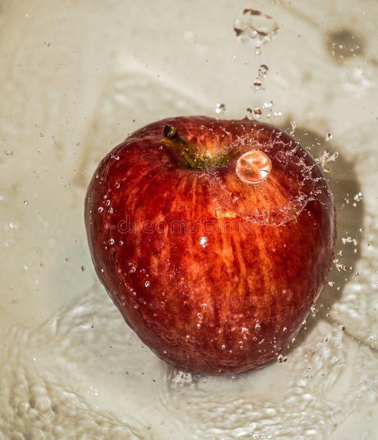 Owoc czerwony dojrzały jabłko w wodzie obrazy stock