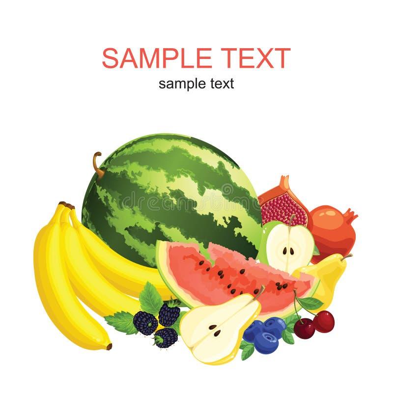 Owoc i jagoda ilustracja wektor