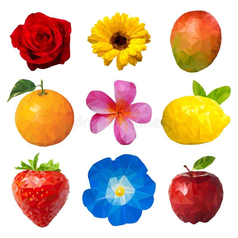 Owoc i kwiatów wieloboka ilustracja royalty ilustracja