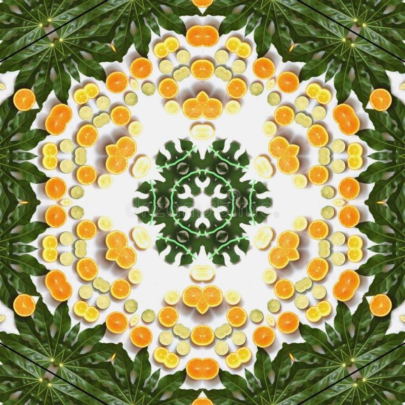 Owoc i warzywo w mandala ilustracja wektor