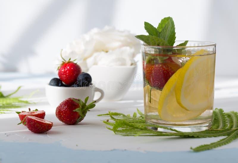 Owoc i ziele natchnąca woda Zimna odświeżająca witaminy detox woda karafki cytrusa napoju lodu pomarańczowa lato woda obrazy stock