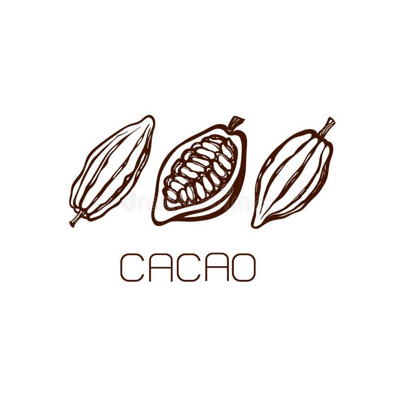 Owoc kakaowe fasole Set ręka patroszona etykietka logo royalty ilustracja