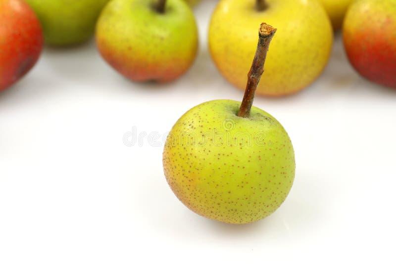 owoc malus pumila zdjęcie stock