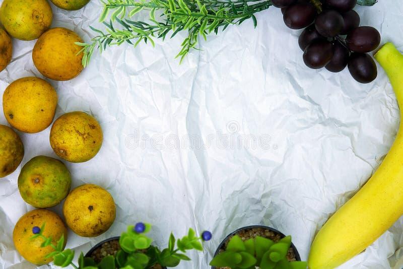 Owoc Rabatowy tło z copyspace fotografia royalty free