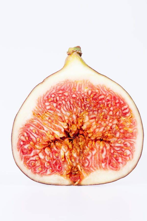Owoc sectioned świeża figa odizolowywająca na białym tle zdjęcie royalty free