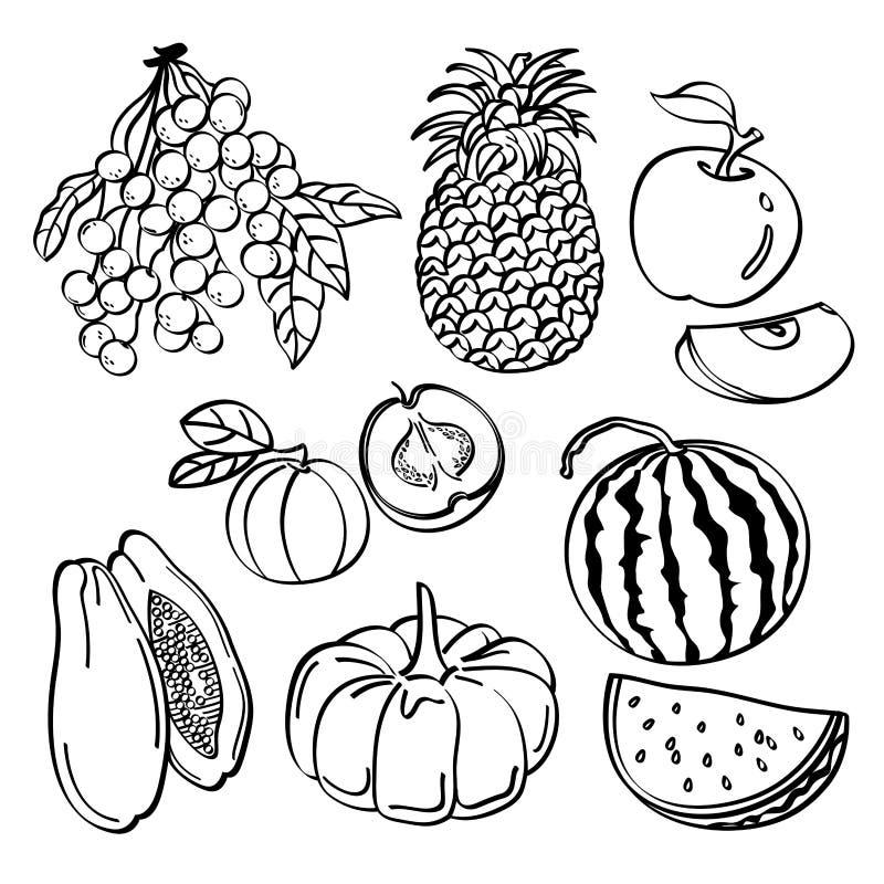 Owoc set ilustracja wektor