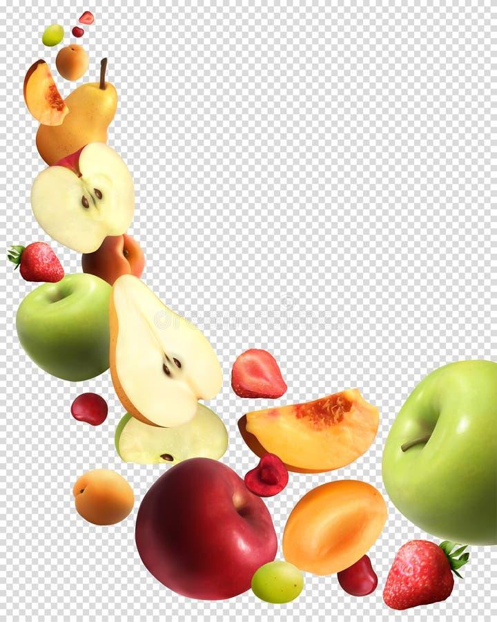 Owoc Spada Realistyczny Przejrzysty set ilustracja wektor